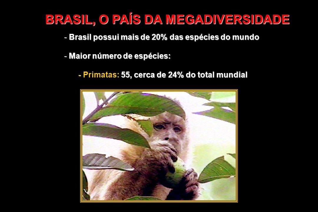 - Brasil possui mais de 20% das espécies do mundo - Maior número de espécies: - 55, cerca de 24% do total mundial - Primatas: 55, cerca de 24% do tota