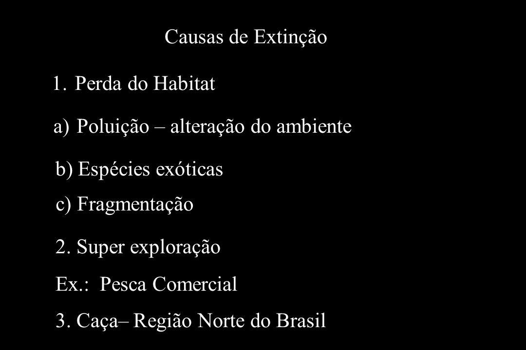 Causas de Extinção 1.Perda do Habitat 2. Super exploração Ex.: Pesca Comercial 3. Caça– Região Norte do Brasil c) Fragmentação b) Espécies exóticas a)