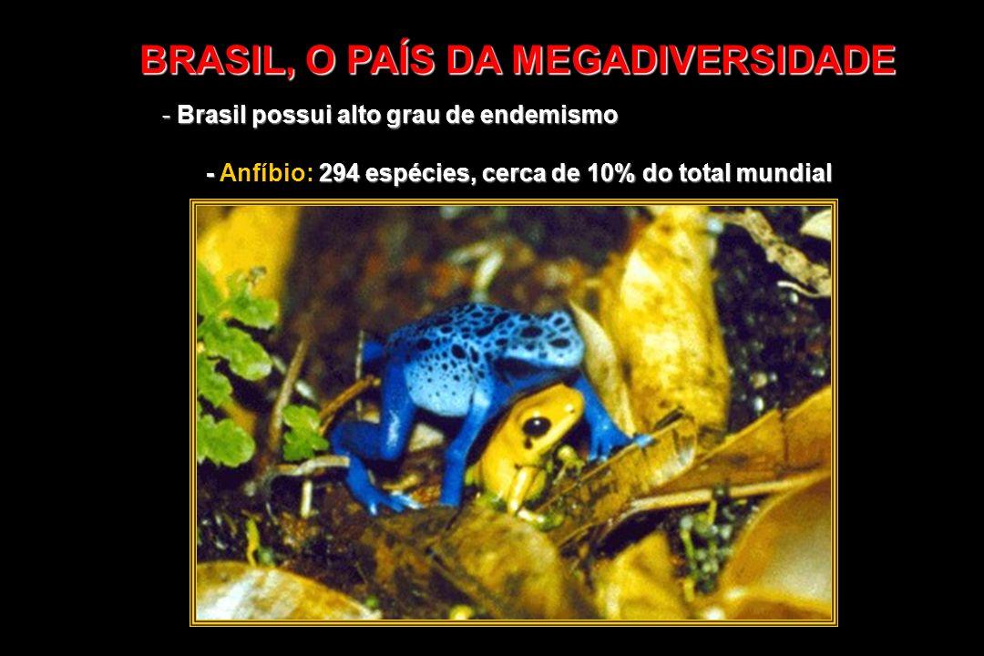 BRASIL, O PAÍS DA MEGADIVERSIDADE - Brasil possui alto grau de endemismo - 294 espécies, cerca de 10% do total mundial - Anfíbio: 294 espécies, cerca