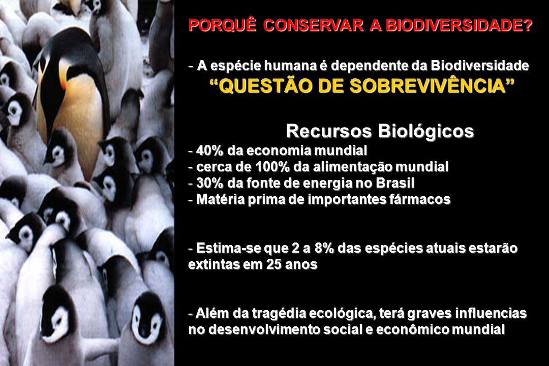 PORQUÊ CONSERVAR A BIODIVERSIDADE? - A espécie humana é dependente da Biodiversidade QUESTÃO DE SOBREVIVÊNCIA QUESTÃO DE SOBREVIVÊNCIA Recursos Biológ