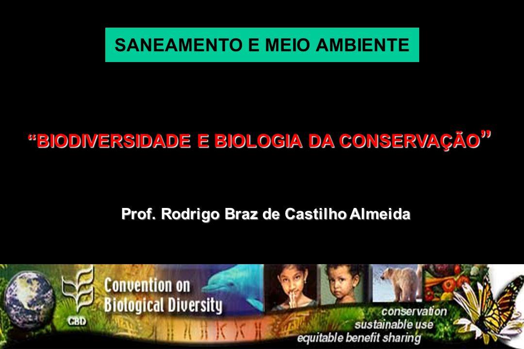 Prof. Rodrigo Braz de Castilho Almeida BIODIVERSIDADE E BIOLOGIA DA CONSERVAÇÃO BIODIVERSIDADE E BIOLOGIA DA CONSERVAÇÃO SANEAMENTO E MEIO AMBIENTE