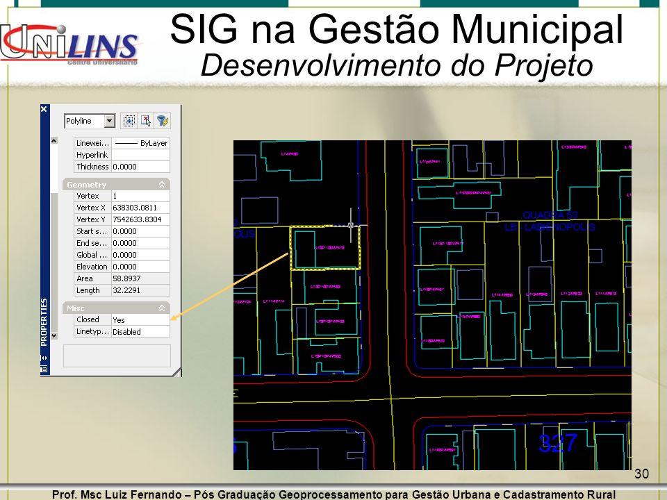 Prof. Msc Luiz Fernando – Pós Graduação Geoprocessamento para Gestão Urbana e Cadastramento Rural 30 SIG na Gestão Municipal Desenvolvimento do Projet
