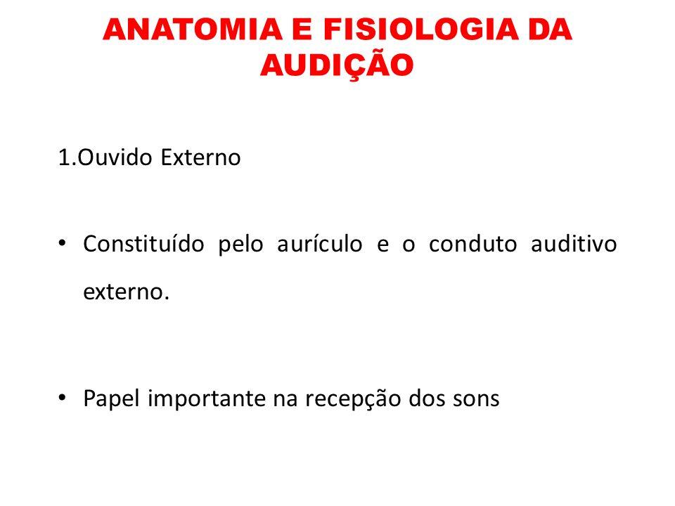 ANATOMIA E FISIOLOGIA DA AUDIÇÃO 1.Ouvido Externo Constituído pelo aurículo e o conduto auditivo externo. Papel importante na recepção dos sons