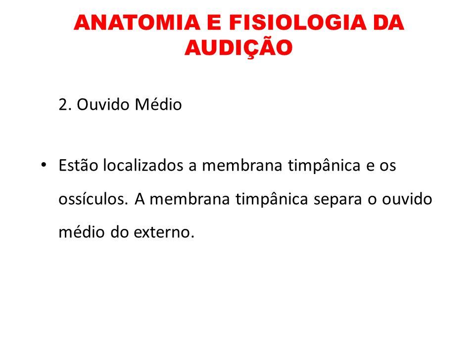 ANATOMIA E FISIOLOGIA DA AUDIÇÃO 2. Ouvido Médio Estão localizados a membrana timpânica e os ossículos. A membrana timpânica separa o ouvido médio do