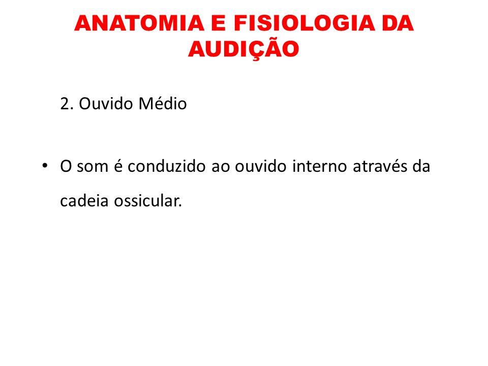 ANATOMIA E FISIOLOGIA DA AUDIÇÃO 2. Ouvido Médio O som é conduzido ao ouvido interno através da cadeia ossicular.