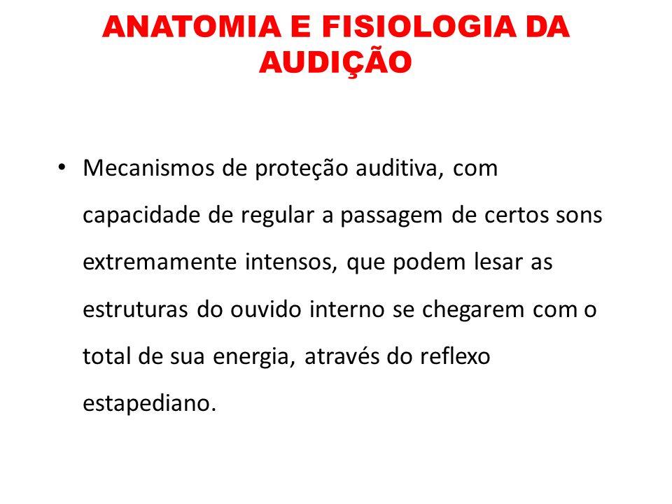 ANATOMIA E FISIOLOGIA DA AUDIÇÃO Mecanismos de proteção auditiva, com capacidade de regular a passagem de certos sons extremamente intensos, que podem