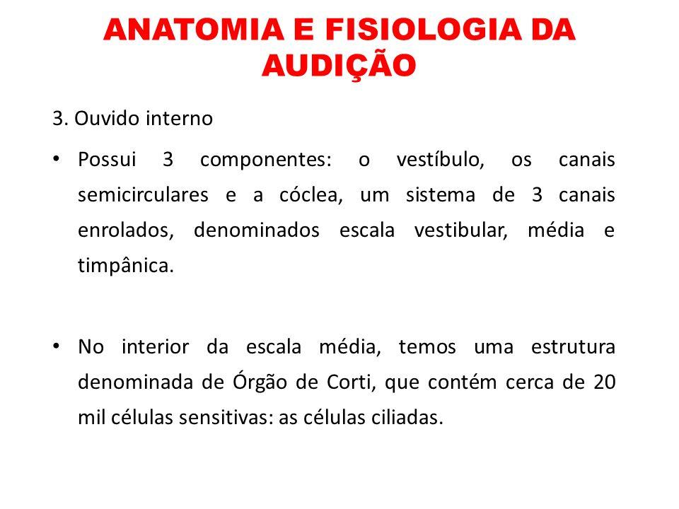 ANATOMIA E FISIOLOGIA DA AUDIÇÃO 3. Ouvido interno Possui 3 componentes: o vestíbulo, os canais semicirculares e a cóclea, um sistema de 3 canais enro
