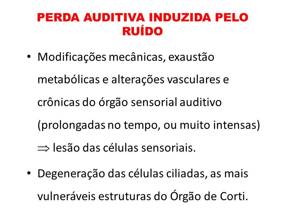 PERDA AUDITIVA INDUZIDA PELO RUÍDO Modificações mecânicas, exaustão metabólicas e alterações vasculares e crônicas do órgão sensorial auditivo (prolon