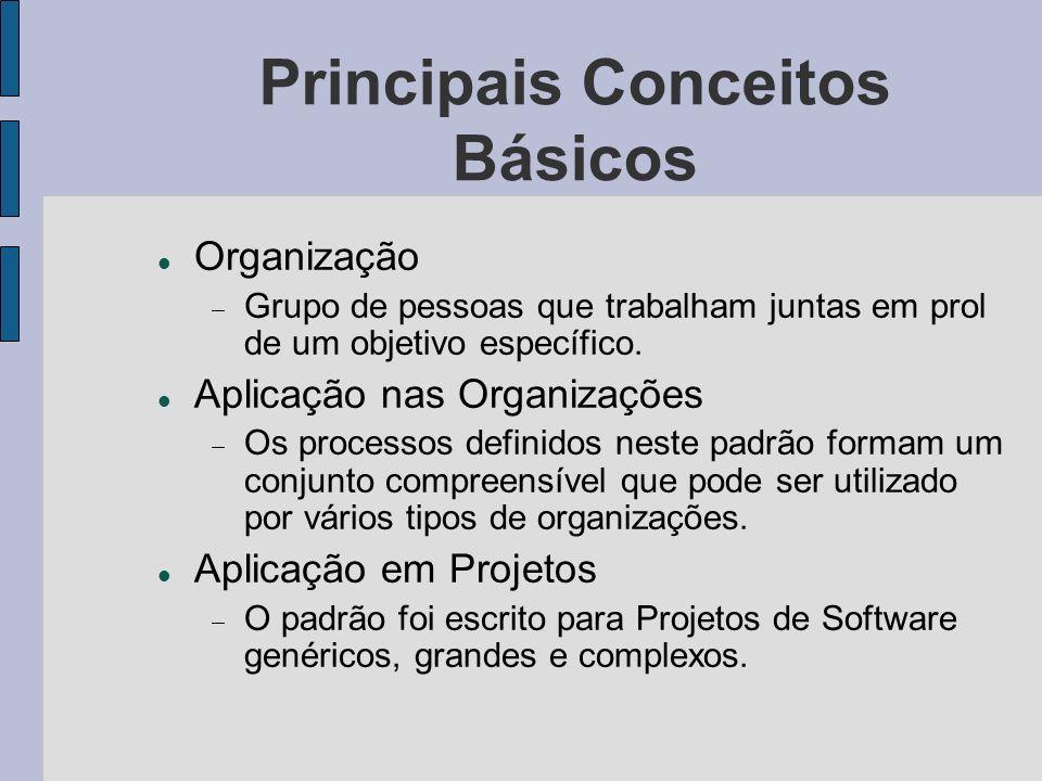 Principais Conceitos Básicos Organização Grupo de pessoas que trabalham juntas em prol de um objetivo específico. Aplicação nas Organizações Os proces