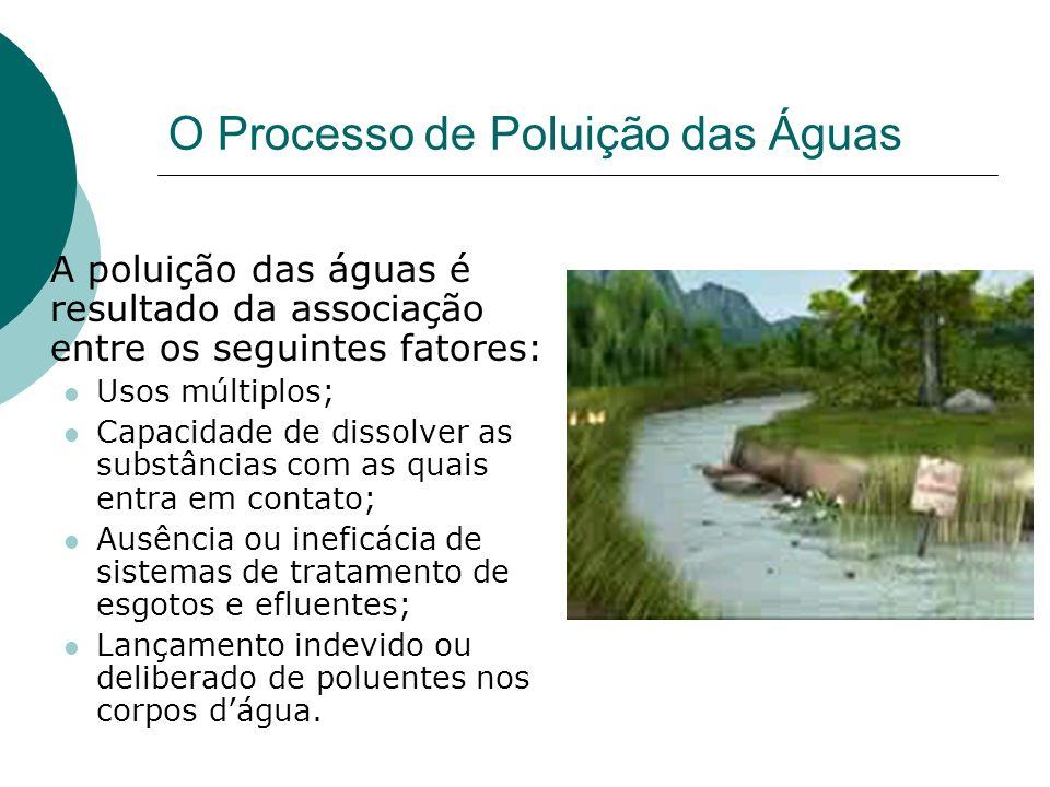 O Processo de Poluição das Águas A poluição das águas é resultado da associação entre os seguintes fatores: Usos múltiplos; Capacidade de dissolver as