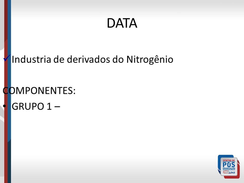 DATA Industria de derivados do Nitrogênio COMPONENTES: GRUPO 1 –