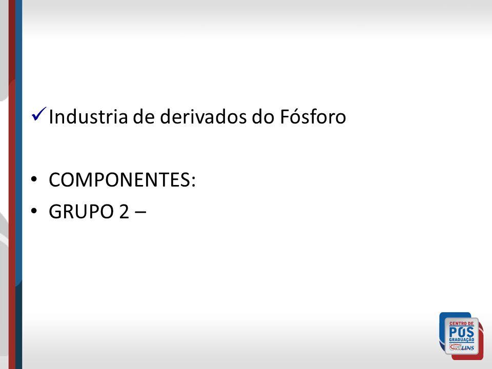 Industria de derivados do Fósforo COMPONENTES: GRUPO 2 –