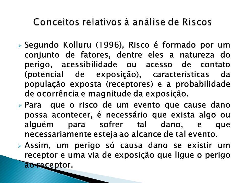 Segundo Kolluru (1996), Risco é formado por um conjunto de fatores, dentre eles a natureza do perigo, acessibilidade ou acesso de contato (potencial d