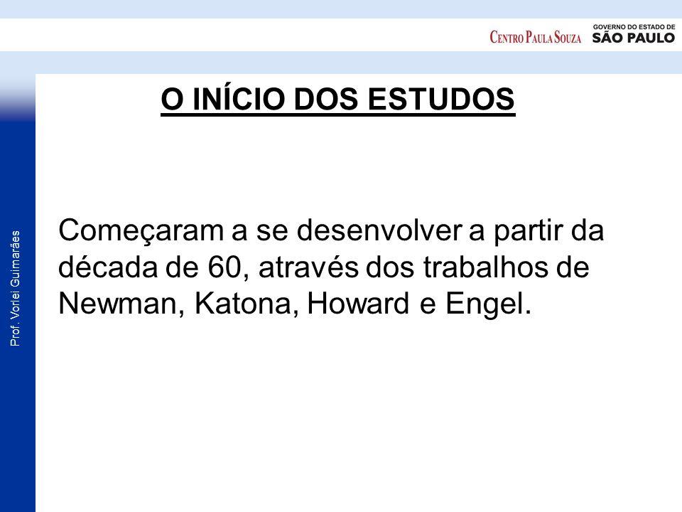 Prof. Vorlei Guimarães O INÍCIO DOS ESTUDOS Começaram a se desenvolver a partir da década de 60, através dos trabalhos de Newman, Katona, Howard e Eng