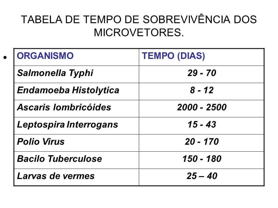 TABELA DE TEMPO DE SOBREVIVÊNCIA DOS MICROVETORES. ORGANISMOTEMPO (DIAS) Salmonella Typhi29 - 70 Endamoeba Histolytica8 - 12 Ascaris lombricóides2000