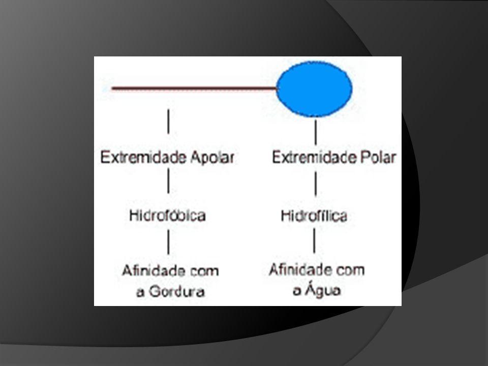 10 Como podemos definir a tensão superficial? Tensão superficial é o trabalho necessário para se aumentar a superfície de um líquido em um cm2. Uma go