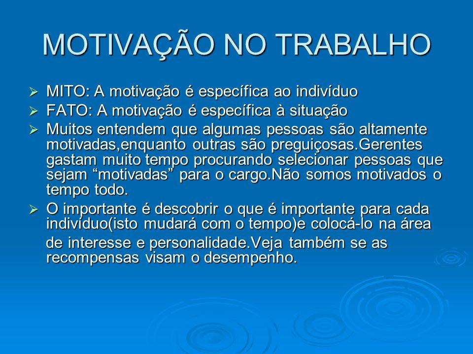 MOTIVAÇÃO NO TRABALHO MITO: A motivação é específica ao indivíduo MITO: A motivação é específica ao indivíduo FATO: A motivação é específica à situaçã