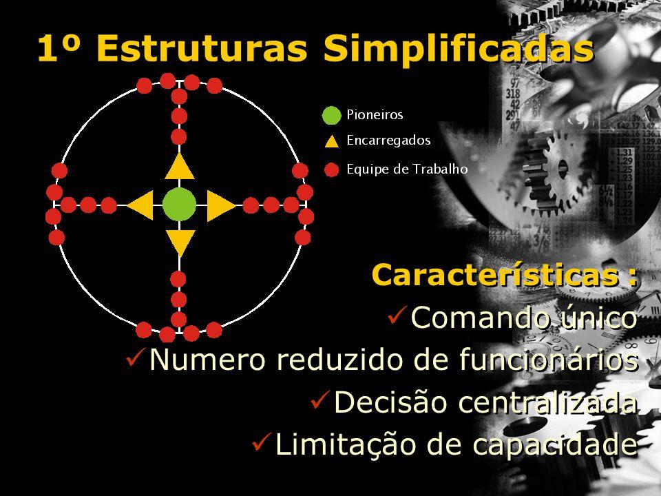Características : Comando único Numero reduzido de funcionários Decisão centralizada Limitação de capacidade Características : Comando único Numero re