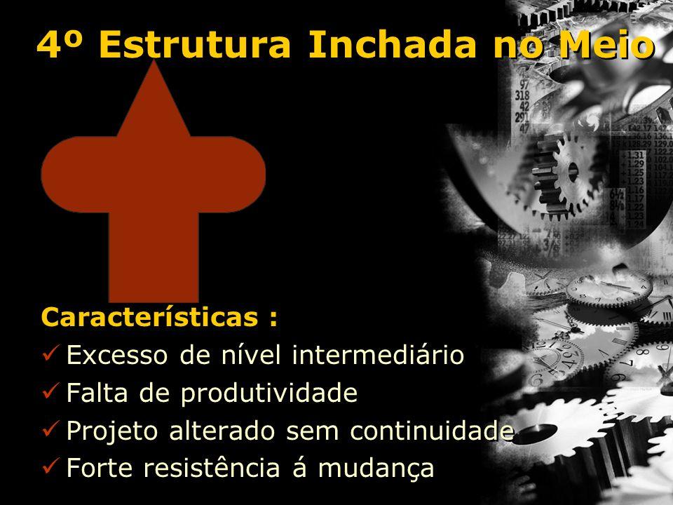 4º Estrutura Inchada no Meio Características : Excesso de nível intermediário Falta de produtividade Projeto alterado sem continuidade Forte resistênc