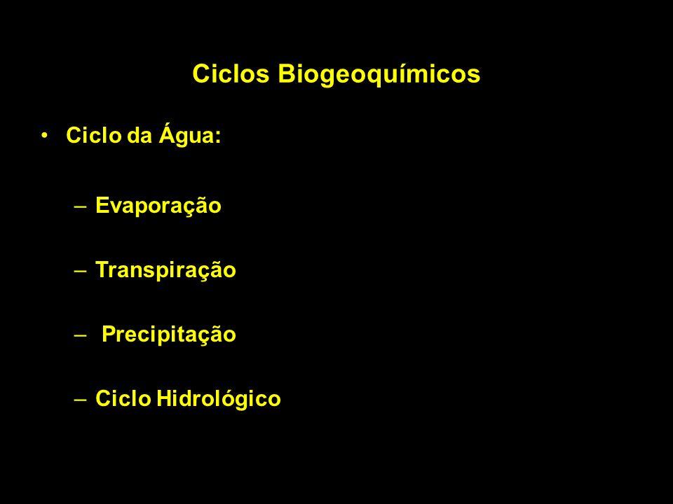 Ciclos Biogeoquímicos Ciclo da Água: –Evaporação –Transpiração – Precipitação –Ciclo Hidrológico
