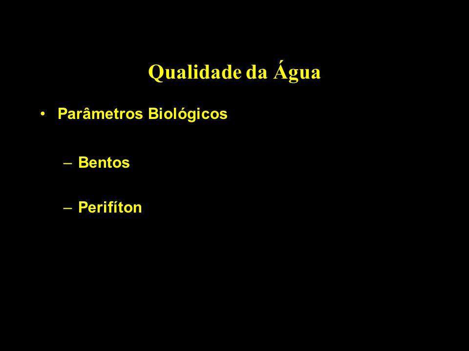 Qualidade da Água Parâmetros Biológicos –Bentos –Perifíton