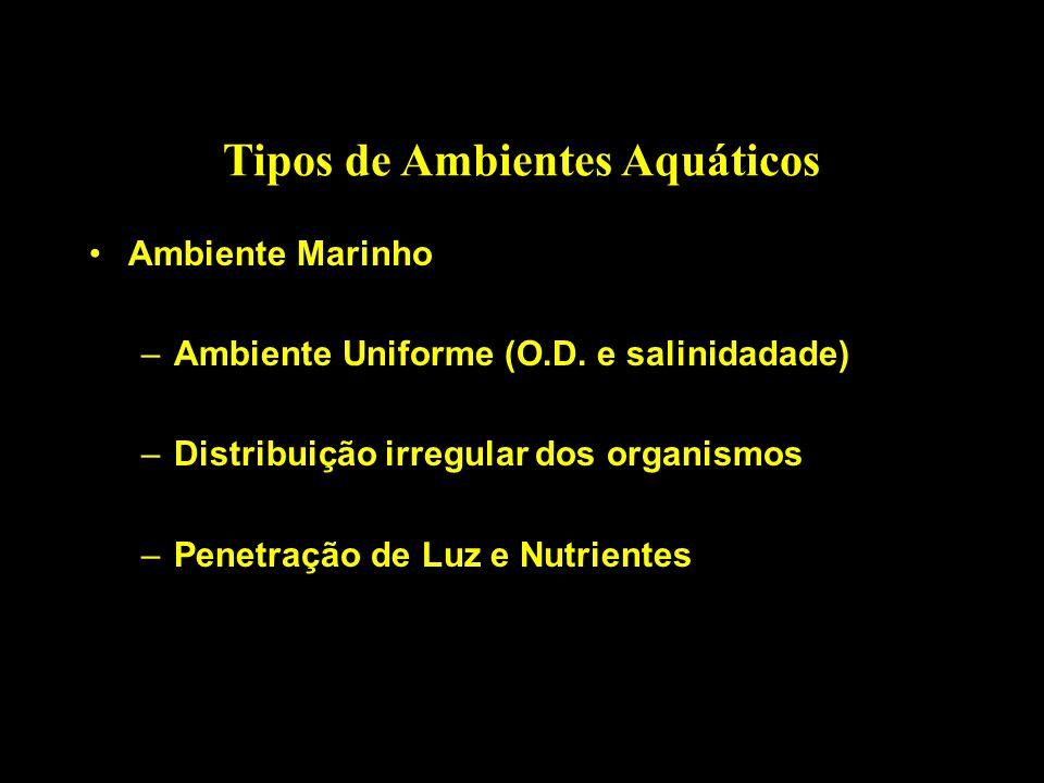 Tipos de Ambientes Aquáticos Ambiente Marinho –Ambiente Uniforme (O.D. e salinidadade) –Distribuição irregular dos organismos –Penetração de Luz e Nut