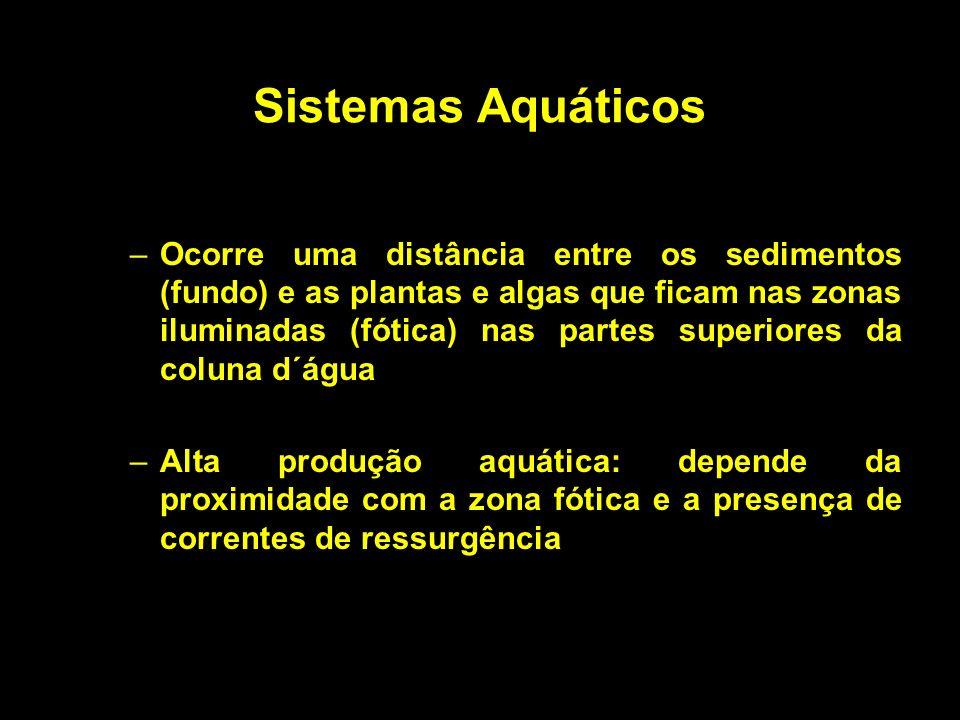 Sistemas Aquáticos –Ocorre uma distância entre os sedimentos (fundo) e as plantas e algas que ficam nas zonas iluminadas (fótica) nas partes superiore