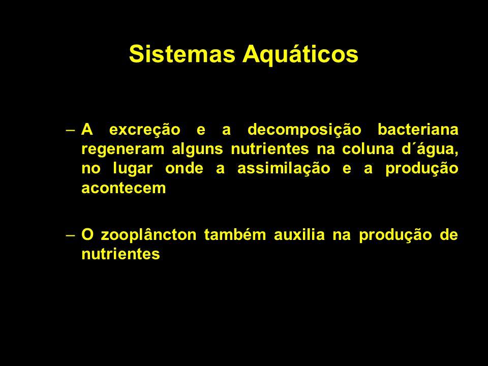 Sistemas Aquáticos –A excreção e a decomposição bacteriana regeneram alguns nutrientes na coluna d´água, no lugar onde a assimilação e a produção acon
