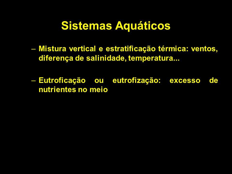 Sistemas Aquáticos –Mistura vertical e estratificação térmica: ventos, diferença de salinidade, temperatura... –Eutroficação ou eutrofização: excesso