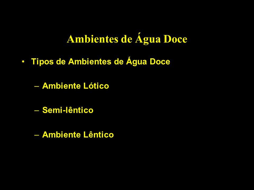 Ambientes de Água Doce Tipos de Ambientes de Água Doce –Ambiente Lótico –Semi-lêntico –Ambiente Lêntico