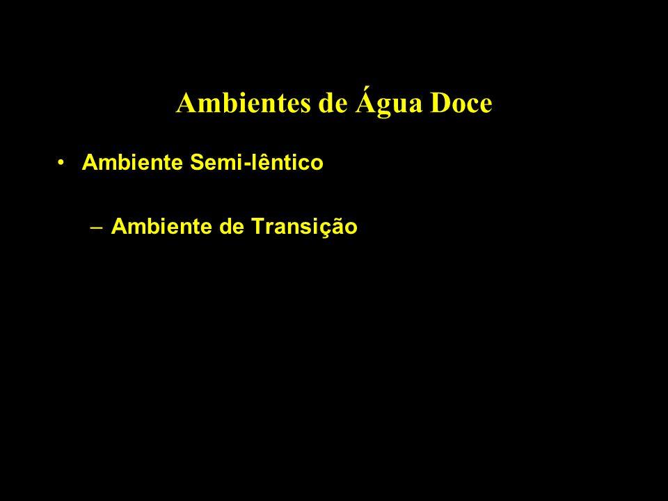 Ambientes de Água Doce Ambiente Semi-lêntico –Ambiente de Transição