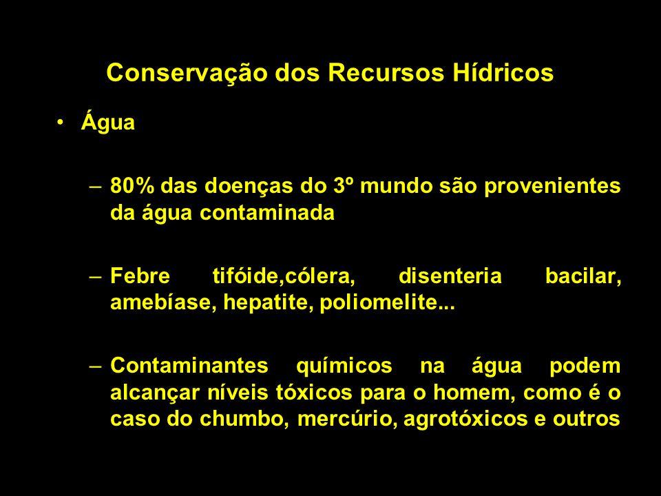 Conservação dos Recursos Hídricos Água –80% das doenças do 3º mundo são provenientes da água contaminada –Febre tifóide,cólera, disenteria bacilar, am