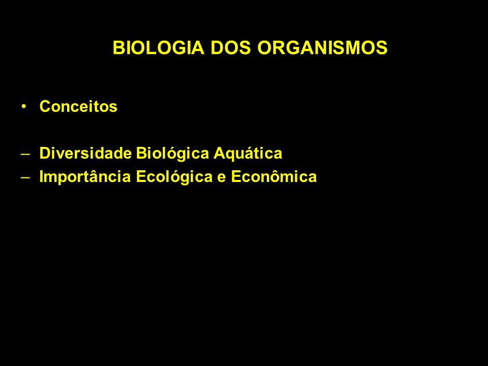 Reciclagem de Nutrientes –Regulam o funcionamento do ecossistema –São diferentes nos sistemas aquáticos e terrestres –Terrestre: detritos no solo –Aquáticos: sedimentos no fundo
