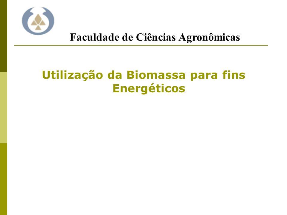 Utilização da Biomassa para fins Energéticos Faculdade de Ciências Agronômicas
