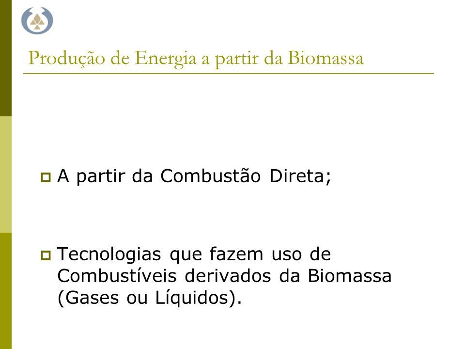 Produção de Energia a partir da Biomassa A partir da Combustão Direta; Tecnologias que fazem uso de Combustíveis derivados da Biomassa (Gases ou Líquidos).
