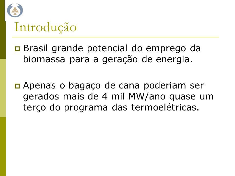 Introdução Brasil grande potencial do emprego da biomassa para a geração de energia.