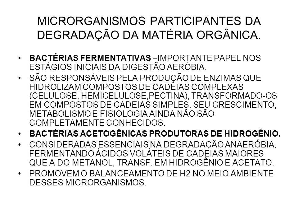 MICRORGANISMOS PARTICIPANTES DA DEGRADAÇÃO DA MATÉRIA ORGÂNICA. BACTÉRIAS FERMENTATIVAS –IMPORTANTE PAPEL NOS ESTÁGIOS INICIAIS DA DIGESTÃO AERÓBIA. S