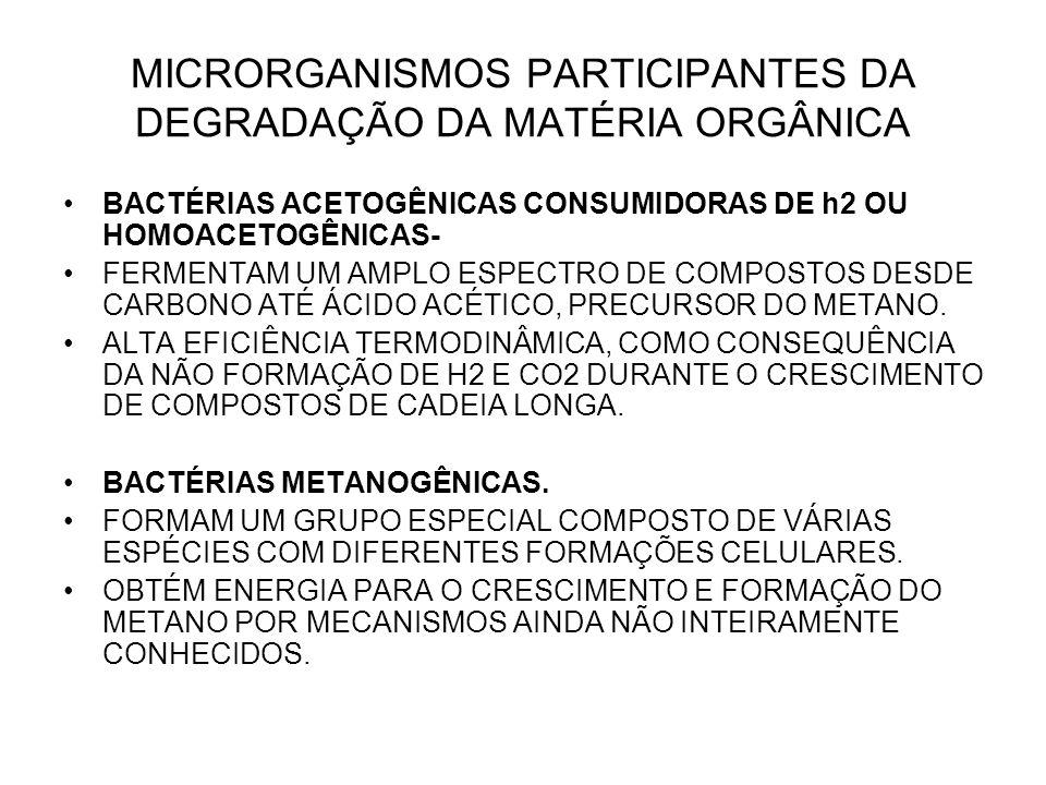MICRORGANISMOS PARTICIPANTES DA DEGRADAÇÃO DA MATÉRIA ORGÂNICA BACTÉRIAS ACETOGÊNICAS CONSUMIDORAS DE h2 OU HOMOACETOGÊNICAS- FERMENTAM UM AMPLO ESPECTRO DE COMPOSTOS DESDE CARBONO ATÉ ÁCIDO ACÉTICO, PRECURSOR DO METANO.