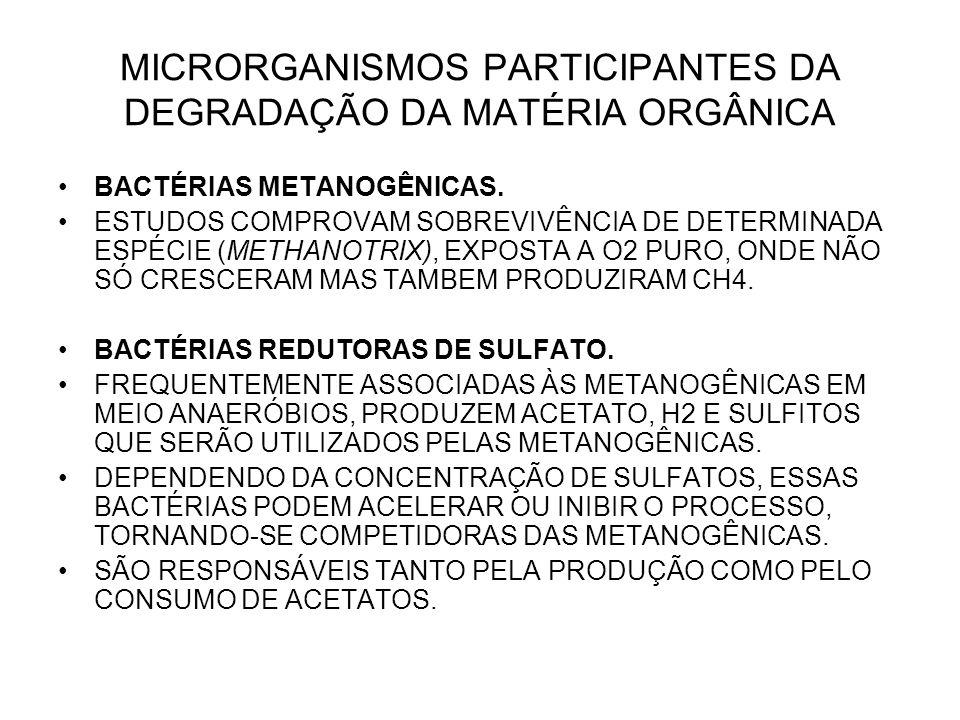 MICRORGANISMOS PARTICIPANTES DA DEGRADAÇÃO DA MATÉRIA ORGÂNICA BACTÉRIAS METANOGÊNICAS.
