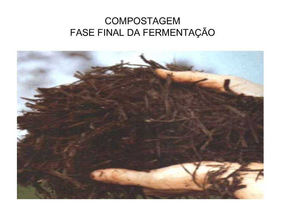 COMPOSTAGEM FASE FINAL DA FERMENTAÇÃO