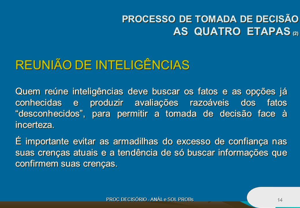 PROC DECISÓRIO - ANÁL e SOL PROBs14 REUNIÃO DE INTELIGÊNCIAS Quem reúne inteligências deve buscar os fatos e as opções já conhecidas e produzir avalia