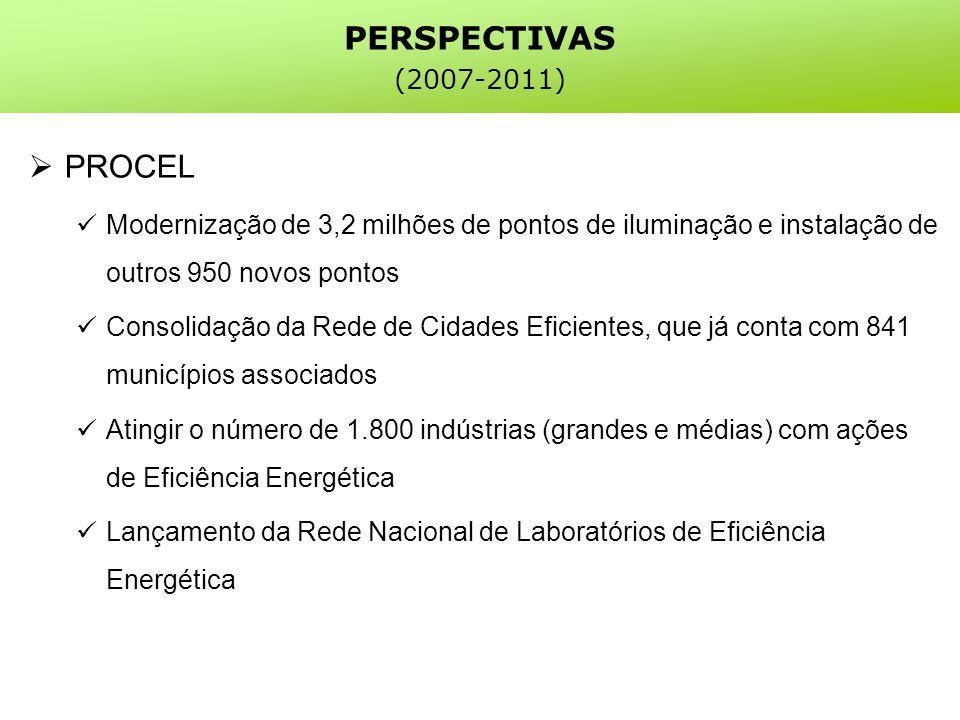 PROCEL Modernização de 3,2 milhões de pontos de iluminação e instalação de outros 950 novos pontos Consolidação da Rede de Cidades Eficientes, que já conta com 841 municípios associados Atingir o número de 1.800 indústrias (grandes e médias) com ações de Eficiência Energética Lançamento da Rede Nacional de Laboratórios de Eficiência Energética PERSPECTIVAS (2007-2011)