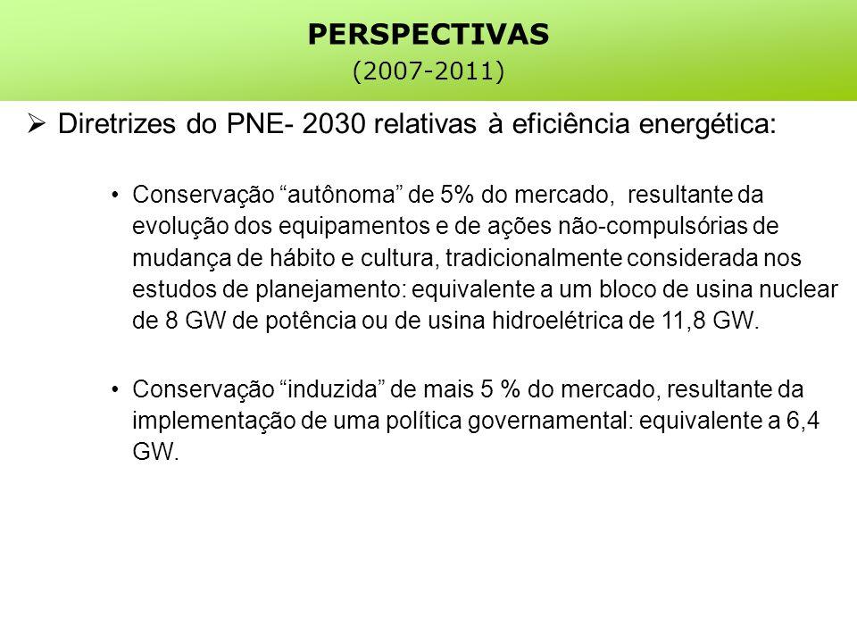 Diretrizes do PNE- 2030 relativas à eficiência energética: Conservação autônoma de 5% do mercado, resultante da evolução dos equipamentos e de ações não-compulsórias de mudança de hábito e cultura, tradicionalmente considerada nos estudos de planejamento: equivalente a um bloco de usina nuclear de 8 GW de potência ou de usina hidroelétrica de 11,8 GW.