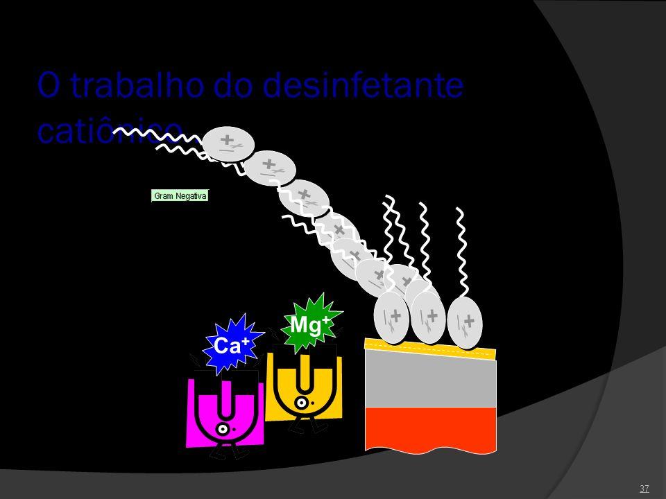 O trabalho do desinfetante catiônico... 37 Ca + Mg +