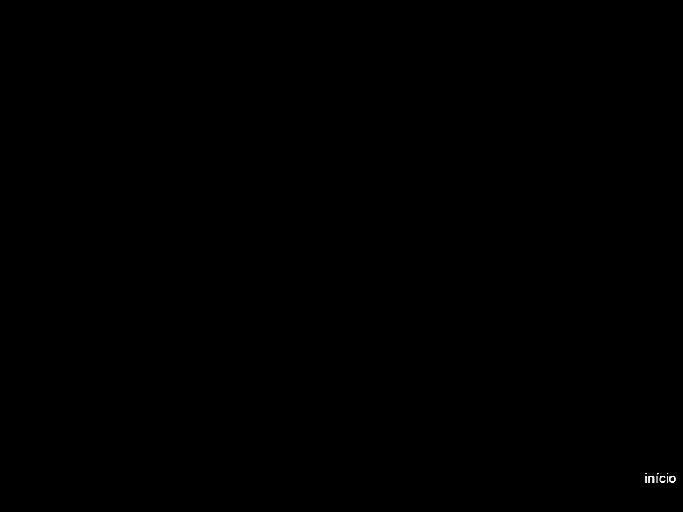 Utilização de termogeradores como fonte de energia alternativa 12 Uso Racional de Energia no Meio Rural – FCA/2004 Vida útil: no mínimo, 20 anos Vida útil: no mínimo, 20 anos Baixa manutenção Baixa manutenção Podem operar em qualquer situação climática na superfície da terra (suportam variações de temperatura ambiente de –30ºC a +50ºC) Podem operar em qualquer situação climática na superfície da terra (suportam variações de temperatura ambiente de –30ºC a +50ºC) Uma única unidade TEG pode fornecer de 15 a 550W Uma única unidade TEG pode fornecer de 15 a 550W Há sistemas instalados com até 8000W Há sistemas instalados com até 8000W Não necessitam baterias de backup Não necessitam baterias de backup