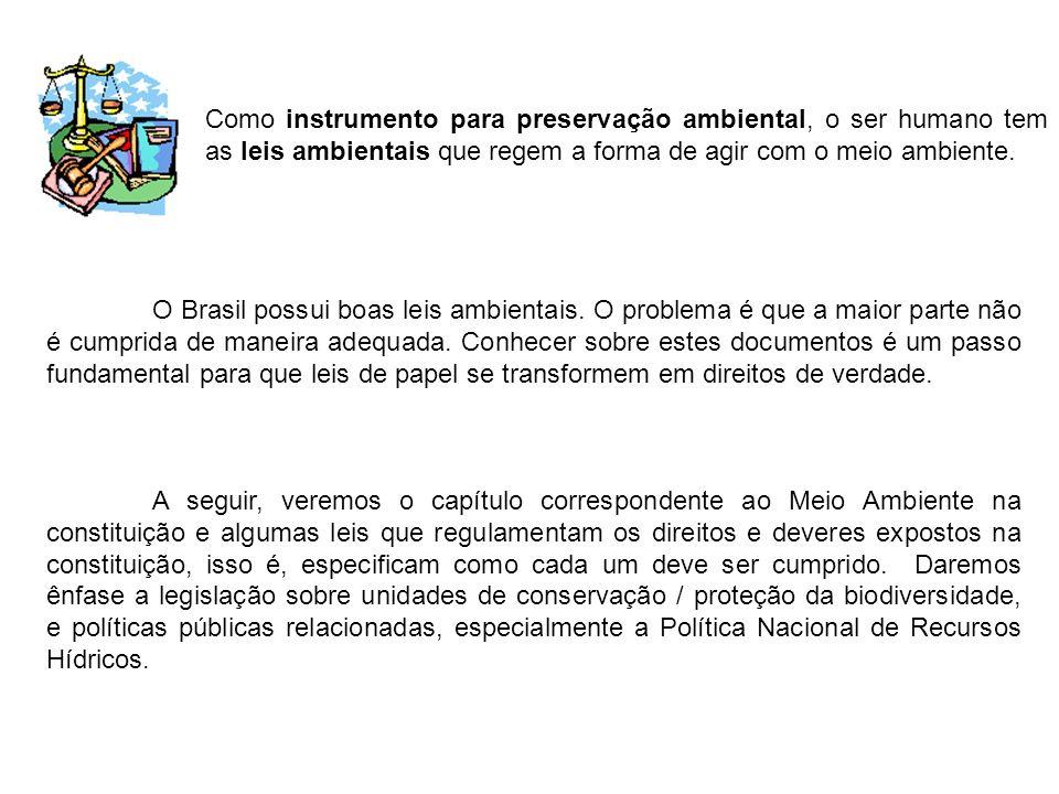 CONSTITUIÇÃO DA REPÚBLICA FEDERATIVA DO BRASIL CAPÍTULO VI: DO MEIO AMBIENTE Art.
