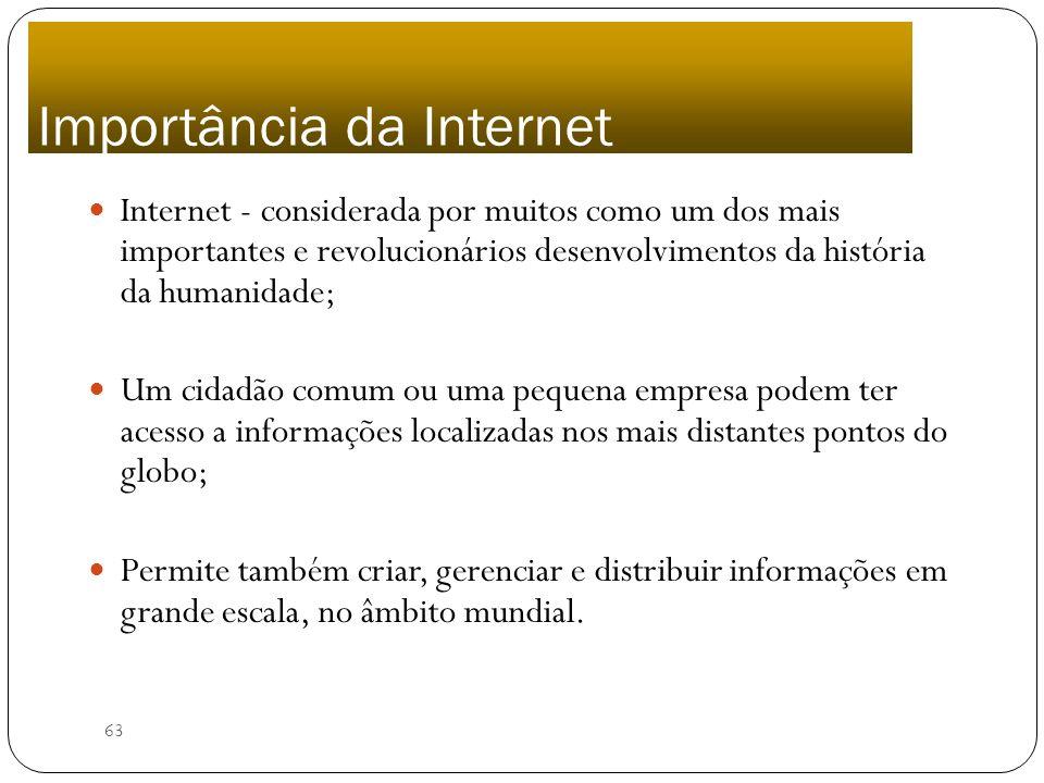 63 Internet - considerada por muitos como um dos mais importantes e revolucionários desenvolvimentos da história da humanidade; Um cidadão comum ou um