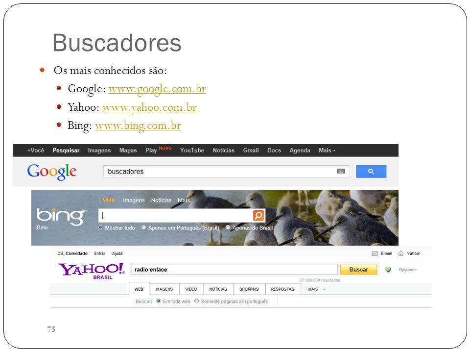 75 Buscadores Os mais conhecidos são: Google: www.google.com.brwww.google.com.br Yahoo: www.yahoo.com.brwww.yahoo.com.br Bing: www.bing.com.brwww.bing
