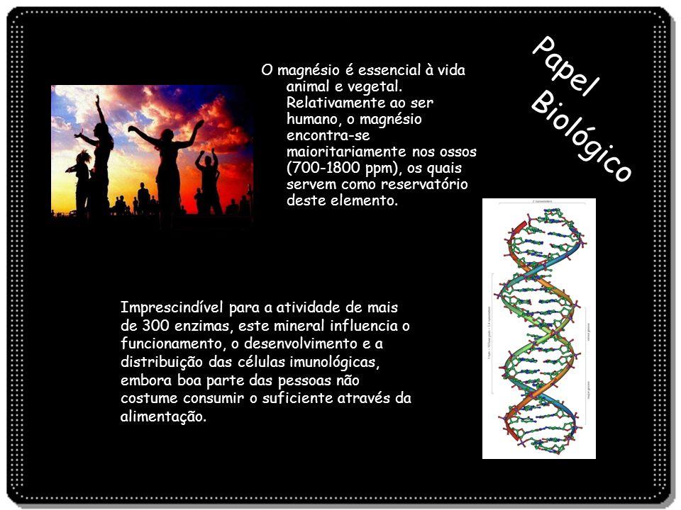 Biológico Papel O magnésio é essencial à vida animal e vegetal. Relativamente ao ser humano, o magnésio encontra-se maioritariamente nos ossos (700-18