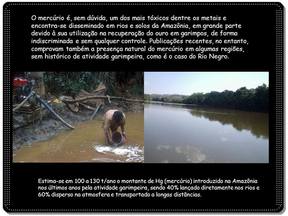 O mercúrio é, sem dúvida, um dos mais tóxicos dentre os metais e encontra-se disseminado em rios e solos da Amazônia, em grande parte devido à sua uti